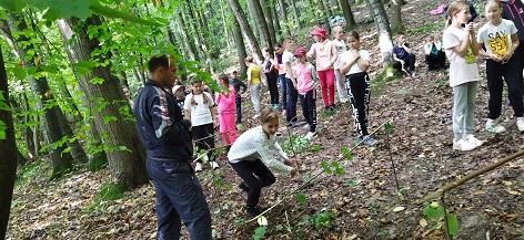 Похід у ліс